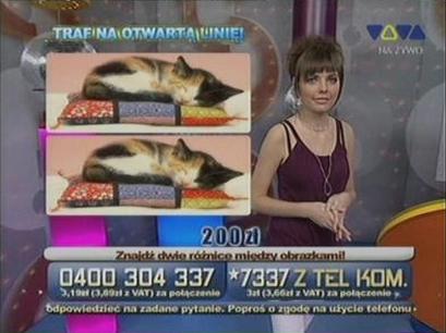 Łatwa Kasa - TelemediaInteracTv - Róża Kulma